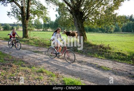 Polish teen bicyclers femelle voyageant le long chemin de terre passant une vache dans un champ. Zawady Centre de Banque D'Images