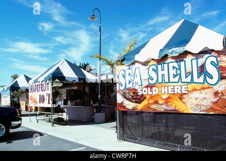 Moss Landing près de Monterey, Californie, États-Unis - les coquillages coquillages / en vente à l'ensemble de la Place du Marché Enchilada