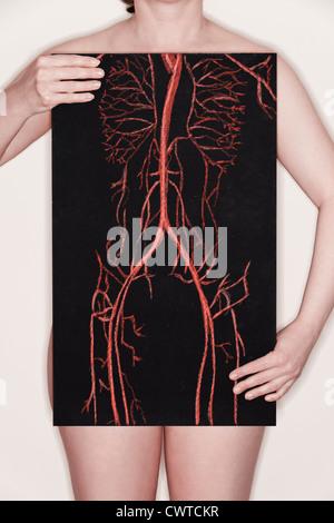 Femme tenant un tableau noir avec une illustration du système vasculaire dessiné dessus à la craie. concept de droit Banque D'Images