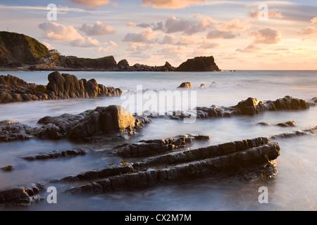 Le soleil de fin de soirée scintille sur les rochers humides à Hartland Quay, North Devon, Angleterre. L'automne Banque D'Images