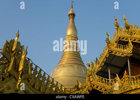 Stupa Shwedagon à Yangon, Myanmar (Birmanie), l'Asie, Banque D'Images