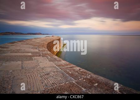 La Cobb en pierre ou mur du port, un célèbre monument de Lyme Regis, sur la côte jurassique, UNESCO World Heritage Banque D'Images