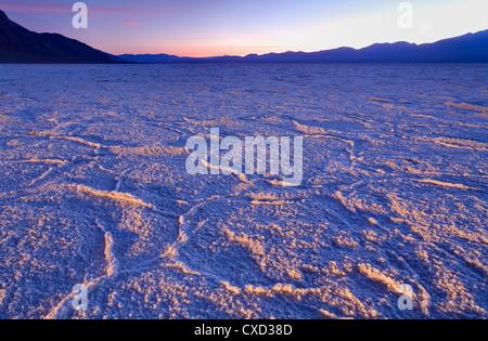 Sel Badwater dans Death Valley National Park, California, États-Unis d'Amérique, Amérique du Nord Banque D'Images