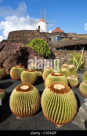 Jardin de cactus (jardin de cactus), San Juan, Lanzarote, îles Canaries, Espagne Banque D'Images