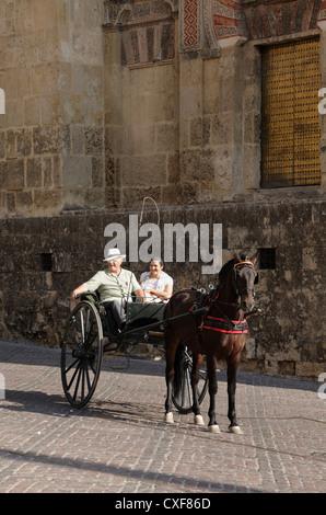 Deux chevaux en buggy par la Cathédrale Cordoue Andalousie Espagne Banque D'Images