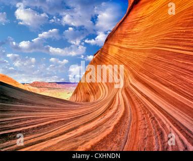 La vague, Vermillion-Cliffs Désert, Arizona C00039M Banque D'Images