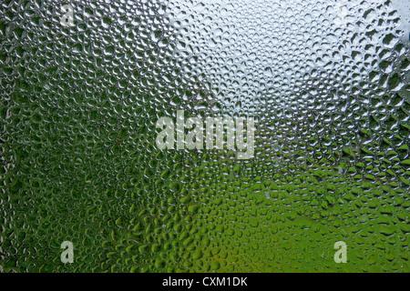 La condensation de l'eau et de gouttes de pluie sur une vitre. Banque D'Images