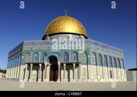 Dôme du Rocher, sur le mont du Temple, vieille ville, Jérusalem, Israël, Moyen Orient, Asie Mineure, Asie Banque D'Images