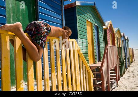 Garçon couché sur une clôture en face de cabines colorées, Muizenberg, Western Cape, Afrique du Sud, l'Afrique Banque D'Images