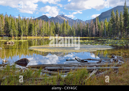 Lac de nymphe, Rocky Mountain National Park, Colorado, USA Banque D'Images