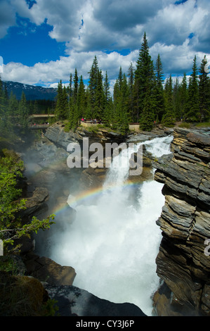 Sunwapta Falls dans le parc national Jasper