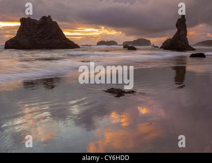 Parc d'état de Bandon, Oregon: réflexions Coucher de soleil à marée basse avec la silhouette du seastacks à Bandon Banque D'Images