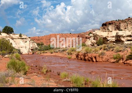 Le lit boueux à travers la vallée de la rivière Paria dans le sud-ouest de l'Utah n