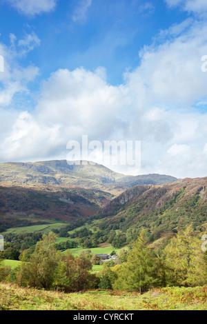Temps d'automne près de Tarn Hows avec the Coniston fells dans la distance, Parc National de Lake District, Cumbria, Angleterre, Royaume-Uni