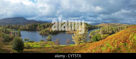 Panorama de l'Tarn Hows au début de l'automne avec Coniston Fells dans la distance, Parc National de Lake District, Cumbria, England, UK
