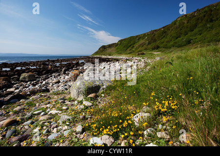 Afficher le long de la côte au Drumadoon près de Blackwaterfoot sur l'île d'Arran, Ecosse, Royaume-Uni