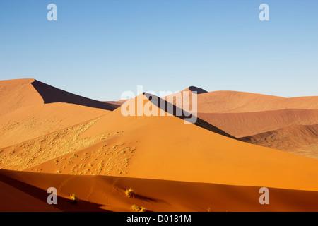 L'errance des dunes de Sossuvlei en Namibie Banque D'Images