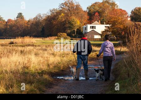 Couple marche loin avec le labrador et spaniel chien sur un chemin boueux sur une journée ensoleillée d'hiver. Banque D'Images