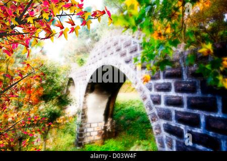 Pont en bois avec de belles érable pour adv ou autres fins utiliser Banque D'Images