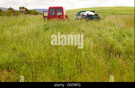 Des voitures abandonnées dans la zone Banque D'Images