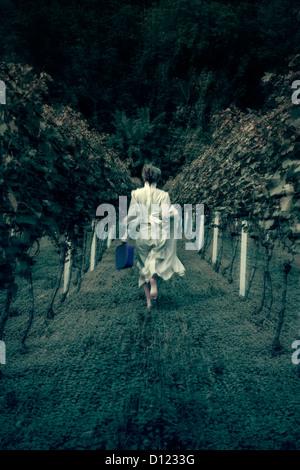 Une femme en robe blanche est en marche grâce à un vignoble avec une valise Banque D'Images