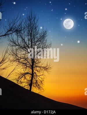 Photo de grand arbre sec dans moonlight, ossature de bois sur hill sur fond sombre nuit, clair de lune avec étoiles Banque D'Images
