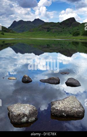 Blea Tarn et Langdale Pikes, Parc National de Lake District, Cumbria, Angleterre, Royaume-Uni, Europe