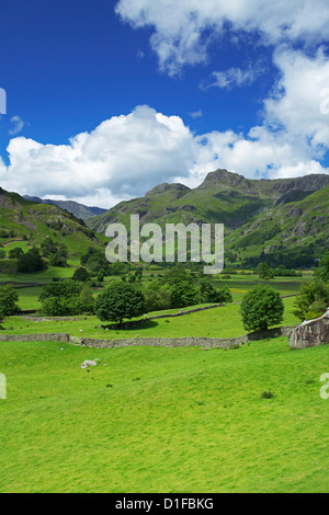 Langdale Pikes, Parc National de Lake District, Cumbria, Angleterre, Royaume-Uni, Europe