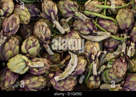 Artichauts, légumes locaux au marché du dimanche matin, Pollenca, Tramuntana, Majorque, Îles Baléares, Espagne Banque D'Images