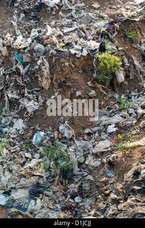Ordures jetées avec des sacs en plastique dans la campagne indienne