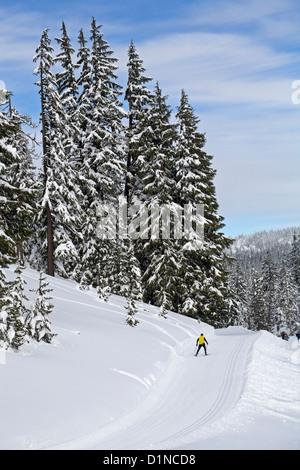 Un skieur nordique tombe à Mount Bachelor ski area, central Oregon Cascades Banque D'Images