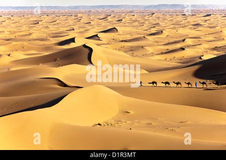 Le Maroc, M'Hamid, Erg Chigaga dunes de sable. Désert du Sahara. Caravane de chameaux et chameliers. Banque D'Images
