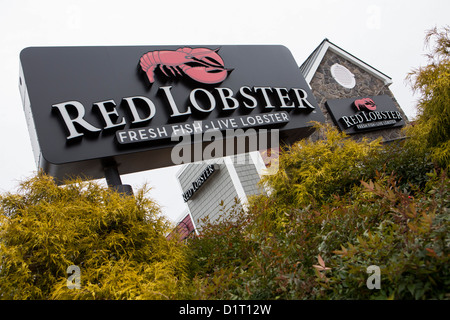 Fruits de mer homard rouge une chaîne de restauration décontractée du restaurant. Banque D'Images