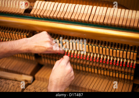 Piano tuning man Banque D'Images