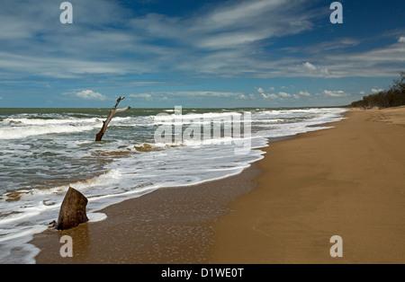 Vaste plage déserte avec grand arbre mort dans les eaux bleues de l'océan Pacifique - preuve de la montée du niveau Banque D'Images