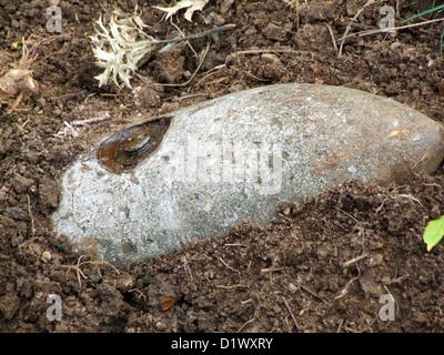 Une bombe non explosée à partir de la Seconde Guerre mondiale, trouvés dans le sol Banque D'Images
