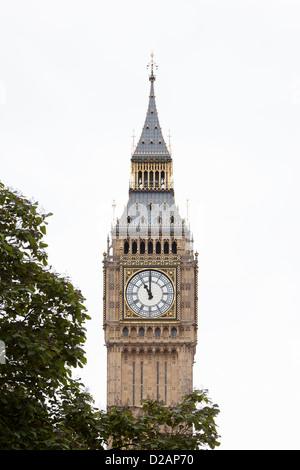 Big Ben clock tower avec arbre Banque D'Images