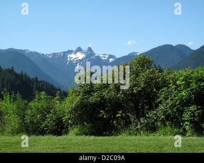 Majestueuses Montagnes Rocheuses, la Colombie-Britannique. Banque D'Images