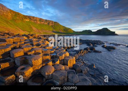 Lumière du soir sur le Giant's Causeway, le comté d'Antrim, en Irlande du Nord.