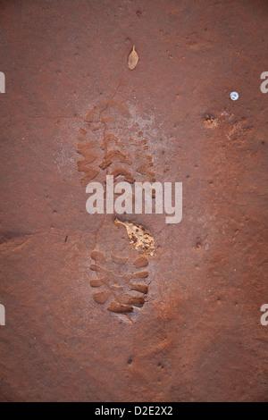 Empreinte de pied dans le parc national de Sarigua (désert), dans la province de Herrera, République du Panama.