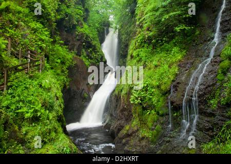 Ess-na-Larach cascade, Glenariff Forest Park, dans le comté d'Antrim, en Irlande du Nord. Banque D'Images