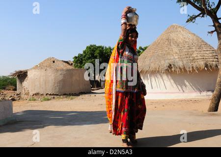 Transport de l'eau femme tribal Mir en pot d'acier, Gujarat, Inde, Asie Banque D'Images