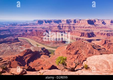 Colorado River Bend de cygne, Dead Horse Point State Park donnent sur, Utah, États-Unis d'Amérique, Amérique du Banque D'Images
