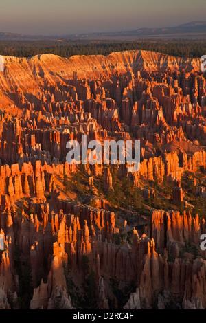 Sunrise de Bryce Point, Bryce Canyon National Park, Utah, États-Unis d'Amérique, Amérique du Nord Banque D'Images