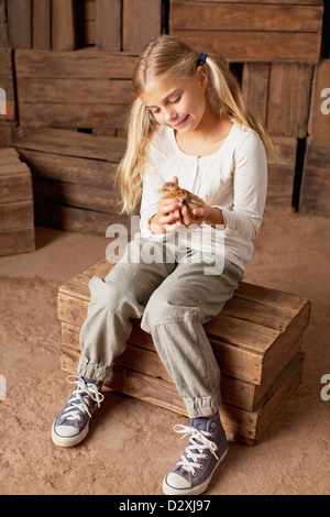 Girl holding chick in barn Banque D'Images