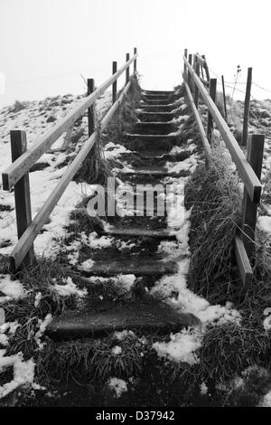 En bois enneigés étapes menant à un sentier public le long d'une rive marécageuse. Banque D'Images