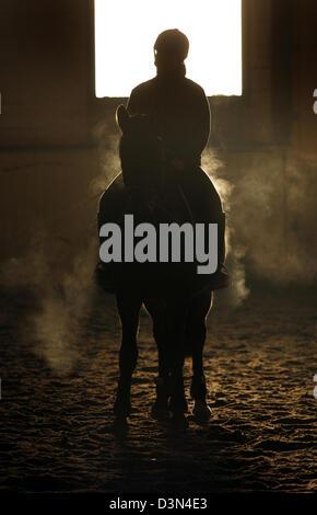 Magdeburg, Allemagne, silhouette, cavalier et son cheval sont dans un manège Banque D'Images