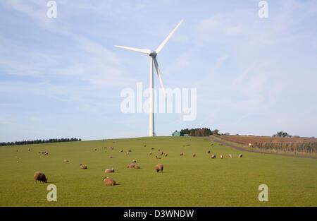 Grand seule éolienne administré par Ecotricity à Shooter's bas, Chewton Mendip, Somerset, Angleterre Banque D'Images