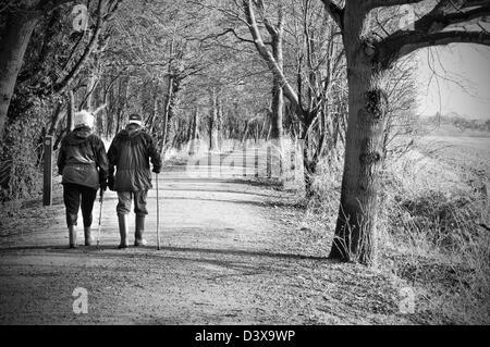 Couple à travers les bois Banque D'Images