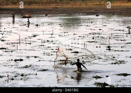 Les hommes de l'Afrique de l'épervier de jets de pêche dans un lac, le Burkina Faso, l'Afrique Banque D'Images